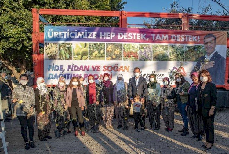 Büyükşehir, Zeytin Fidanı Dağıtımını Akdeniz'den Başlattı