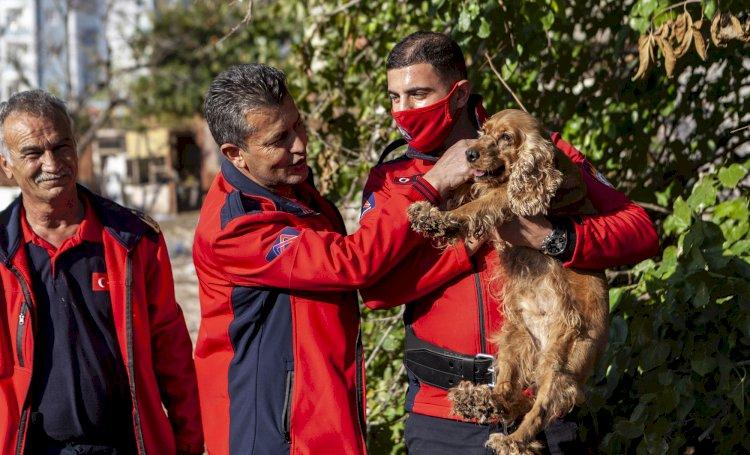 Büyükşehir Ekipleri Kuyuya Düşen Köpeği Yara Almadan Kurtardı